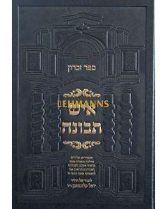 איש תבונה - ספר זכרון הרב יואל קלוגמאנן