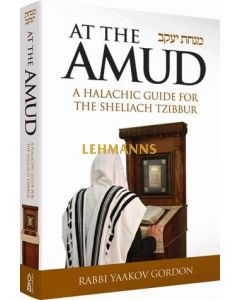 At the Amud, Laws for Shliach Tzibur
