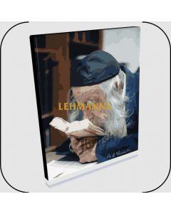 "Paint By Number Jbrush - The Steipler ZT""L/Rabbi Yaakov Yisroel Kanievski 16x20"