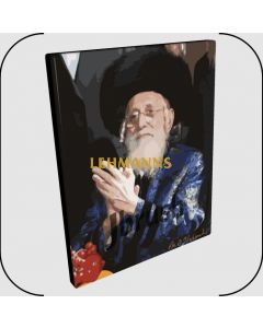 "Paint By Number Jbrush - R"" Shlomo Halberstam/The Bobover Rebbe ZT""L 16x20"