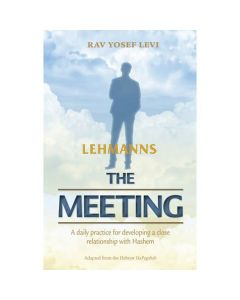 The Meeting - Paperback