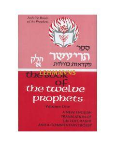 The Twelve Prophets Vol 1 (Judaica Press Mikraos Gedolos Series)