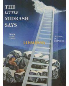 The Little Midrash Says - Bereishis
