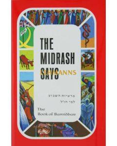 The Midrash Says 4 - Bamidbar