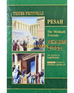Kehati Pesachim with pictures
