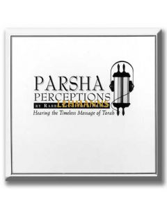 Artscroll: Parsha Perceptions - Bamidbar / Devorim - Series 2 (Cassettes) by Rabbi Yissocher Frand